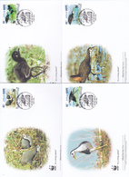World Wide Fund For Nature 2013 Maldives,Amaurornis Phoenicurus, Set 4 Official First Day Covers - FDC