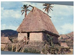 (753) Fiji - Chief's House - Fidji