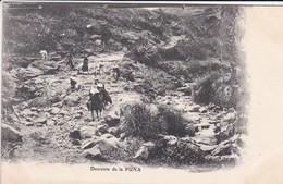 PEROU----descente De La PUNA---voir  2 Scans - Pérou