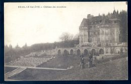 Cpa Du 74 Le Salève Château Des Avenières    MARS18-10 - Altri Comuni