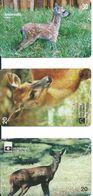 3 Télécartes Brésil  Animal Biche Faon (D 404) - Brésil
