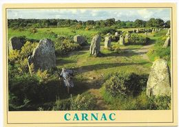 Carnac - Les Alinements De Menhirs Du Ménec - Dolmen & Menhirs