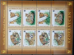 Azerbaijan, 2005, Mi. 592-95, Sc. 782, Y&T 507-10, WWF, Panthera, Leopard, MNH - Azerbaïjan