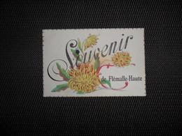 Flémalle - Haute  :  Souvenir - Flémalle