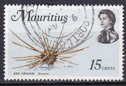 Mauritius, 1969 - 15c Sea Urchin - Nr.344 Usato° - Mauritius (1968-...)