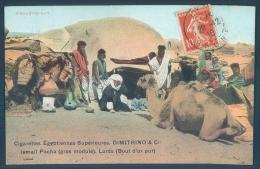 Egypt Egypte Cigarettes Egyptiennes Dimitrino Bisharins Hut - Egypt