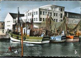 CPSM - GUILVINEC - Nouvelle Criée Et Un Coin Du Port, Animé - Bateaux De Pêche - Guilvinec
