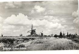 M 1217/18  KINDERDIJK    LOT 2 CARTES - Kinderdijk