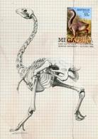 """Entier Postal De 2008 D'Australie Sur CP Avec Timbre Et Illust. """"Faune Géante Disparue - Genyornis Newtoni """" - Préhistoriques"""