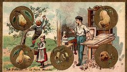 Le Poirier - Meubles - Le Sablé Marie Bayeux - Confiserie & Biscuits