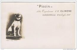 """"""" PICCIN """":  DELLA  TORPEDINIERA  A. M.  CLIMENE  -  3°  SQUADRIGLIA  -  DARDANELLI  19/19 LUGLIO 1912  -  FOTO  -  FP - Guerra"""