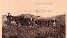 """L'AUVERGNE """"Labour Et Semailles"""" - Auvergne Types D'Auvergne"""