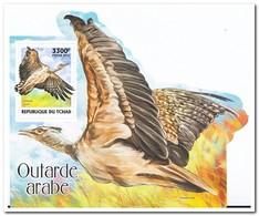 Tsjaad 2017, Postfris MNH, WWF, Birds - Tsjaad (1960-...)