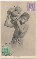 FIDJI, FIJI - Carte Photo - Giant Fiji Lemons - Stinson Studio - Fidji