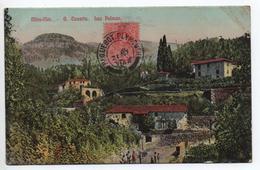 MIRA FLOR - GRAN CANARIA - LAS PALMAS - Gran Canaria