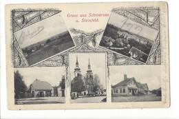 19556 - Gruss Aus Schwarzau Am Steinfeld Multivues - Autriche