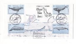 TERRES AUSTRALES ET ANTARCTIQUES FRANCAISES ( TAAF ) / Programme Cétacés ( 4 Timbres : Baleines, Cachalot, Rorqual ) - TAAF : Territori Francesi Meridionali
