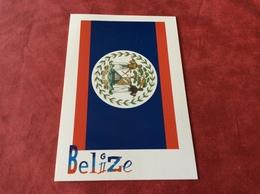 Belize Flag - Belize