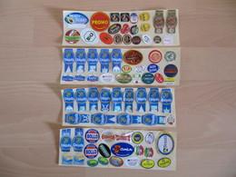 Lot De 75 étiquettes Fruits (Labels) - Fruits & Vegetables