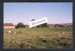 25 -Sainte Colombe - Une Partie Du Village En 2002 - France