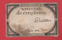 Assignat  / 5 Livres - Assignats & Mandats Territoriaux