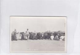 IRAN PERSIA. CAMELS AT BASIDU.-RARISIME-DELUXE ETAT-BLEUP - Iran