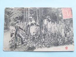 Scènes Champètres ( Dans Les Bois ) ( C & C ) Anno 1905 > Riberac Dordogne ( Voir Photo ) ! - France