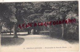 53-  CHATEAU GONTIER- PROMENADES DU BOUT DU MONDE - Chateau Gontier
