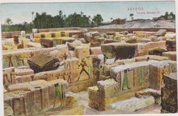 AFRIQUE,EGYPTE,EGYPT,TEMP LE,ABYDOS,VILLE  SAINTE DIEU OASIS,PRES THEBES,ANTIQUE,MADFOUNEK, RAMSES 3 - Egypt