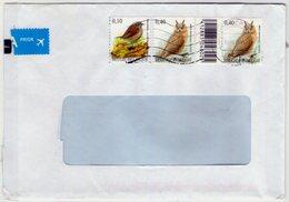 Belgie. Belgique. Birds Stamps. - Owls