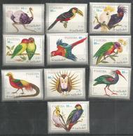 FUJEIRA - MNH - Animals - Birds - Parrots - Perroquets & Tropicaux