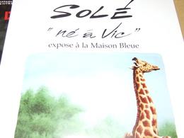 Affiche - Vic Fézensac  Exposition Solé à La Maison  Bleue 2003 - Manifesti