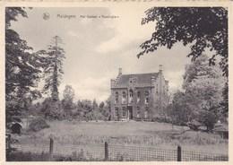 Maldegem, Maldeghem, Kasteel Reesinghe (pk45033) - Maldegem
