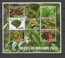 Malawi 2016 Herbs Sheetlet + 5 S/s MNH - Malawi (1964-...)