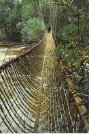 Afrique > GABON Pont De Lianes De Poubara   *PRIX FIXE - Gabon