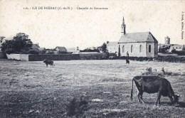 22 - Cotes D Armor - ILE De BREHAT - Chapelle De Keranroux ( Vaches Au Paturage ) - Ile De Bréhat