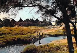 Afrique  En Couleurs -Village Africain African Village (A)  (enfants) ( Editions :HOA-QUI   N°4050 ) -*PRIX FIXE - Non Classés