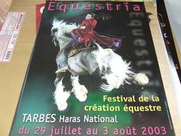Affiche -  Equestria Tarbes Haras National  Festival Equestre 2003 - Manifesti