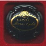 Capsule CHAMPAGNE Richomme N°: 11a - Champagne
