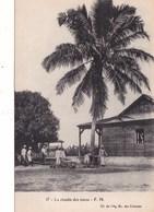 LA RECOLTE DES COCOS (dil347) - Cartes Postales