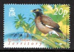 BIOT 2004 Definitives (Birds) 20p: Single Stamp UM/MNH - British Indian Ocean Territory (BIOT)