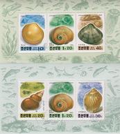 Korea 1994 - 2 M/S Marine Life Shell Animals Sealife Nature Fauna Molluscs Carolium Muticum Stamps Sc 3359-3360 CTO - Coneshells
