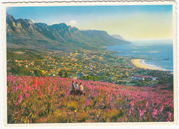 Cape Peninsula / Kaapse Skiereiland - Camps Bay / Kampsbaai  - South Africa - Zuid-Afrika
