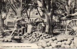 84 CAVAILLON  Le Marché Aux Melons - Cavaillon