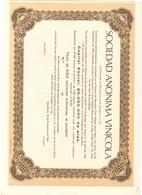 ACCION ANTIGUA - ACTION ANTIQUE =   SOCIEDAD ANONIMA VINICOLA 1965 - Acciones & Títulos
