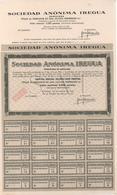 ACCION ANTIGUA - ACTION ANTIQUE =  SOCIEDAD ANONIMA IREGUA 1946 - Sin Clasificación