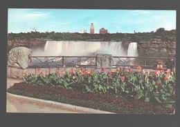 Ontario - American Falls From Queen Victoria Park - 1954 - Niagara Falls