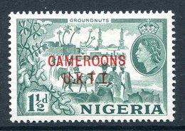 Cameroon - Nigeria Pictorials Overprints - 1½d Groundnuts MNH (SG T3) - Cameroon (1960-...)