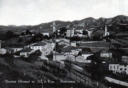 VIANINO - PANORAMA - PARMA  - VIAGGIATA - Parma