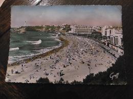 D 64 - Biarritz - La Grande Plage (à Droite, Le Casino) - Biarritz